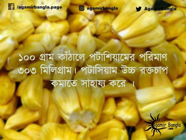 jackfruit_benefit_bangla